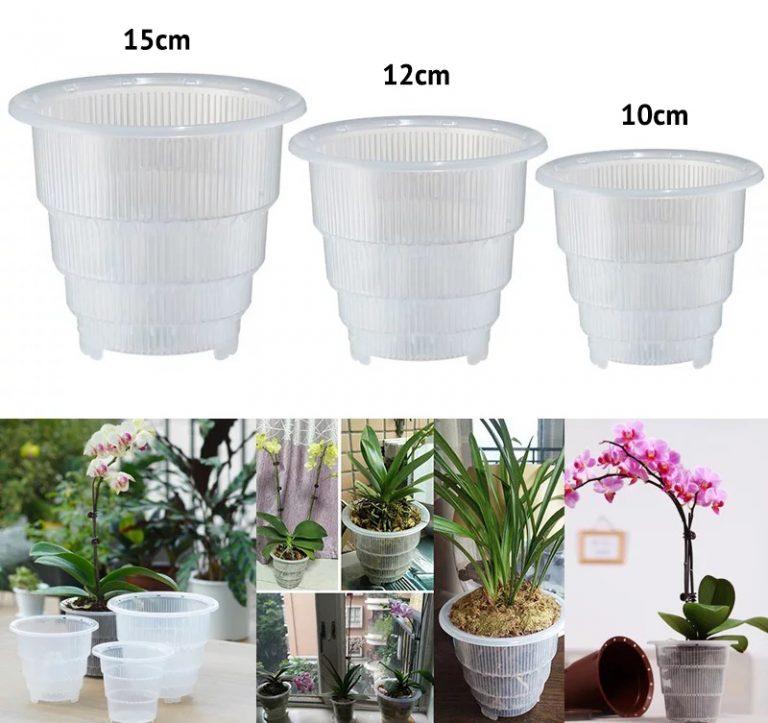 Clear Orchid Flower Planter Pot