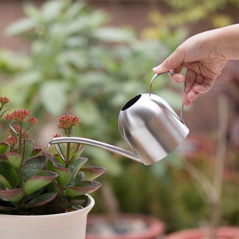 Mini Watering Can